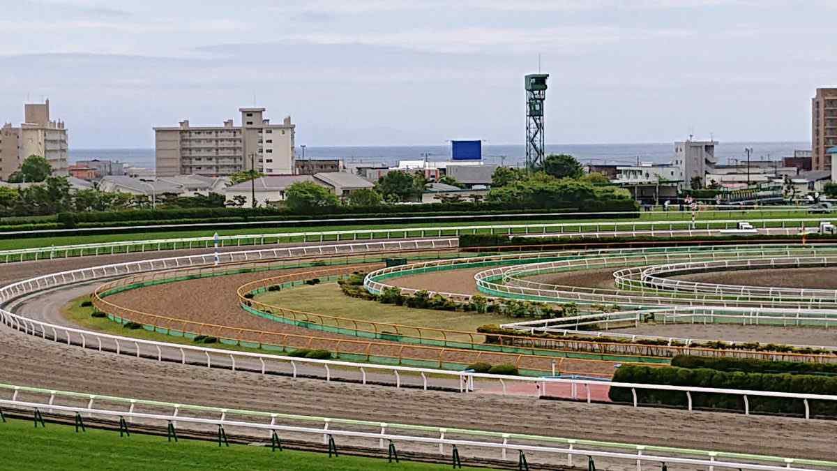函館競馬場からの水平線