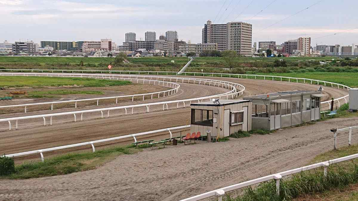 川崎競馬場・小向練習馬場