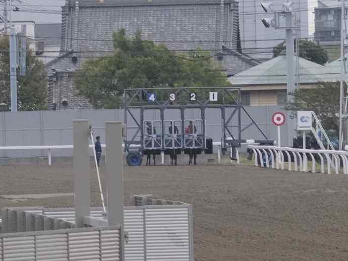 ゲート練習