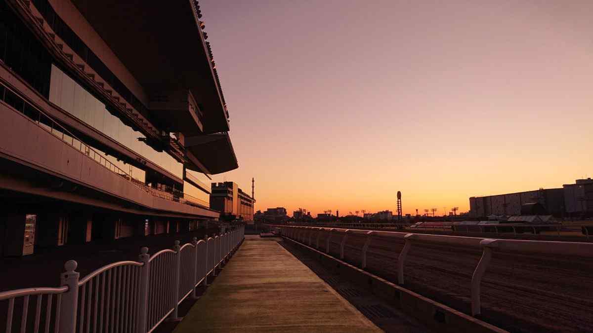 朝の川崎競馬場