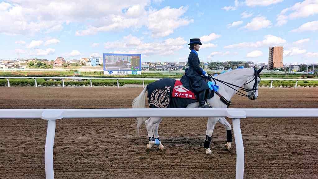 浦和の誘導馬