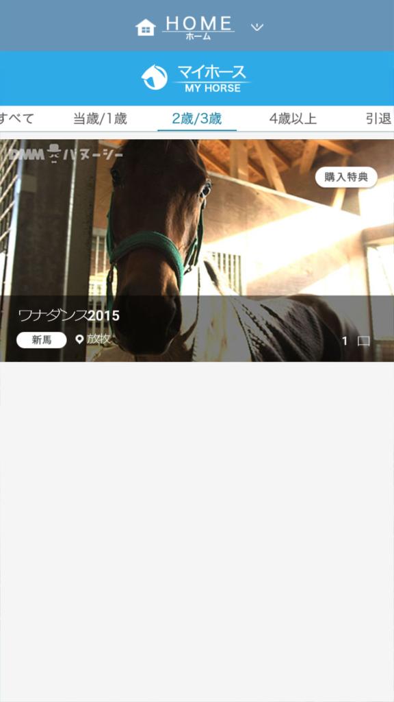 DMMバヌーシー 持ち馬の一覧